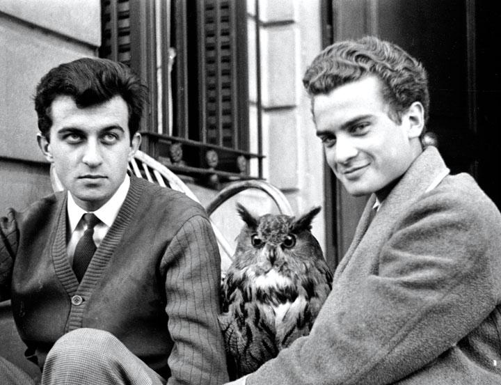 Juan y Luis Goytisolo, en 1954