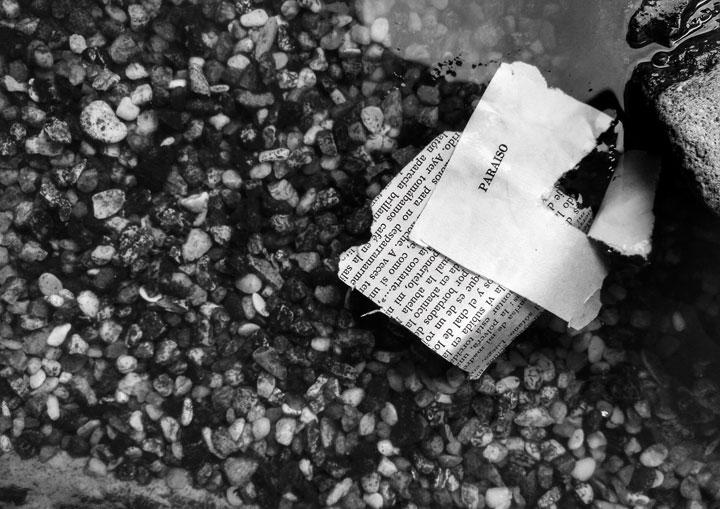 Ser: esfuerzo de la memoria. Alegría: olvido momentáneo. Memoria: retorno divisible. Olvido: acto necesario. © María Alcantarilla